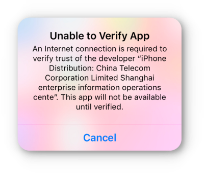 unable to verify app ios